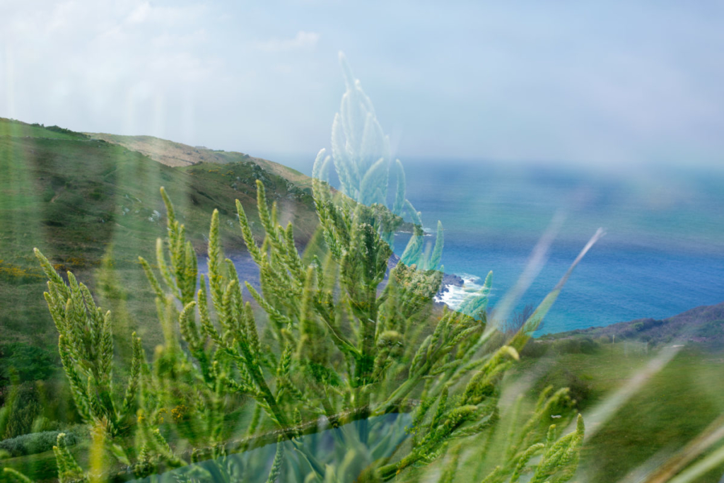 Photography Cornwall